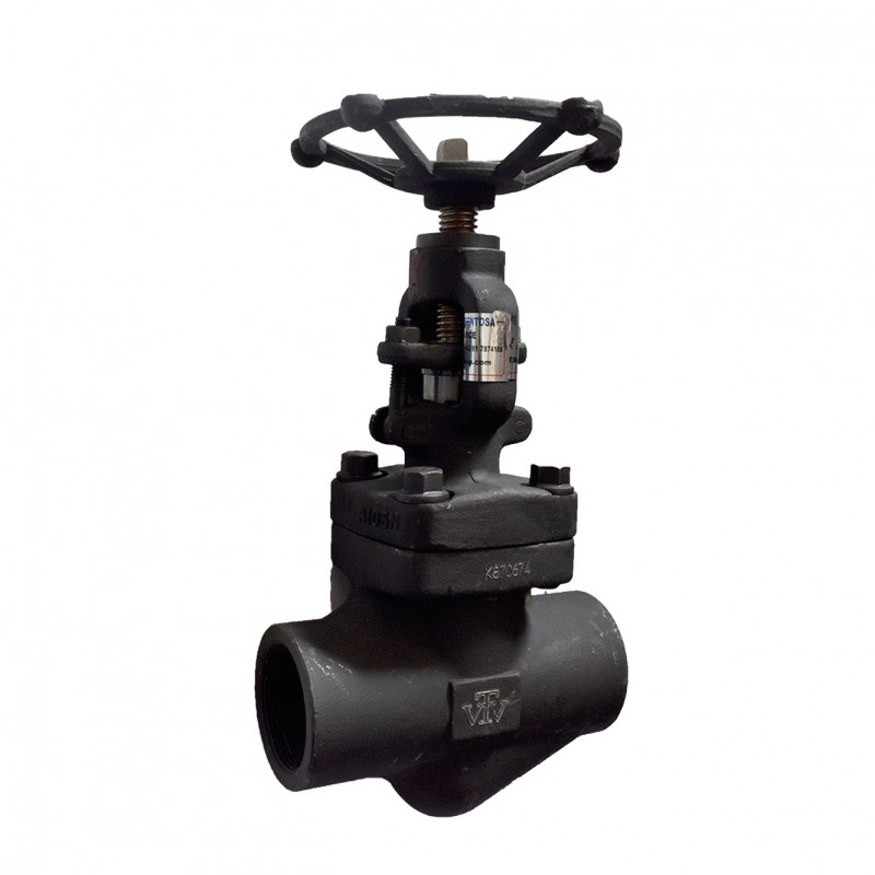 VTV Globe valve, Forged Steel , Screw End, Class 800, 1""