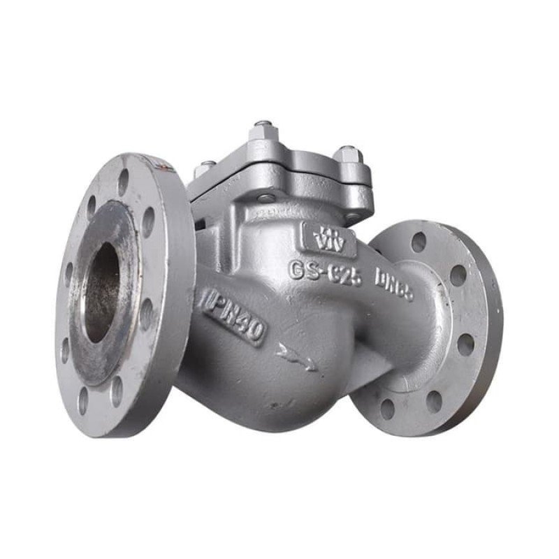 VTV Lift Check Valve, Cast Steel, PN 40, 10""