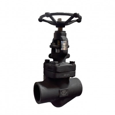 VTV Globe valve, Forged Steel , Screw End, Class 800, 1.5""