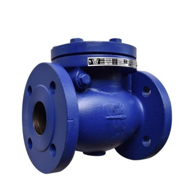 VTV Swing Check Valve, Cast Iron, JIS 10K, 8""