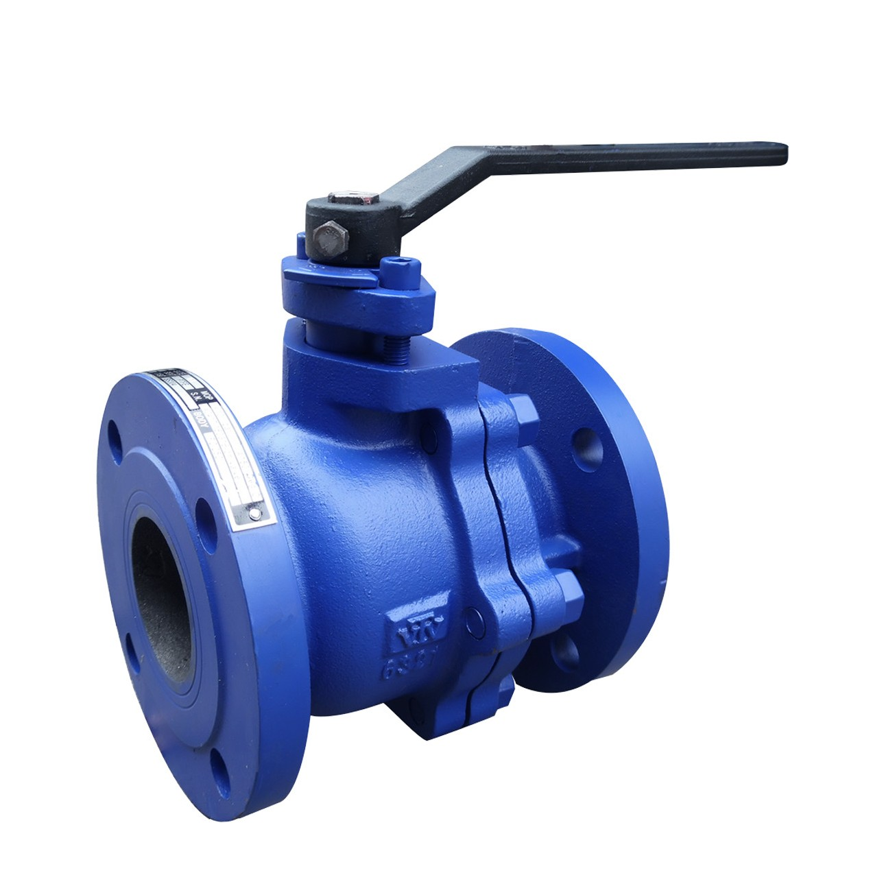 VTV 2pcs Body Ball Valve, Cast Iron, JIS 10K, 8""