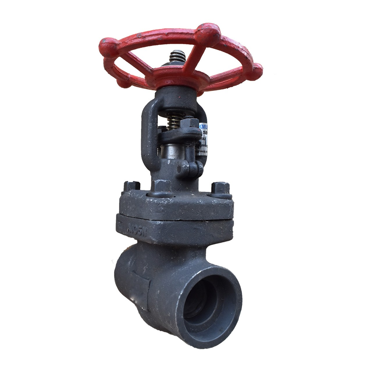 VTV Gate Valve Forged Steel,Screw End Class 800, 1""