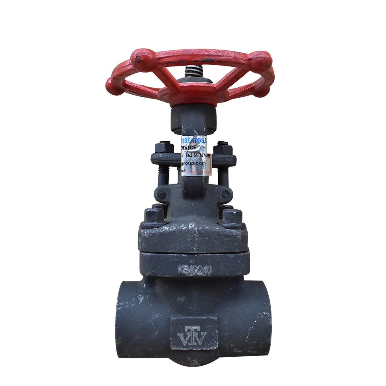 VTV Gate Valve Forged Steel,Screw End Class 800, 2""
