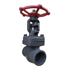 VTV Gate Valve Forged Steel,Socket Welded Class 800, 2""