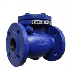 VTV Swing Check Valve, Cast Iron, JIS 10K, 2""